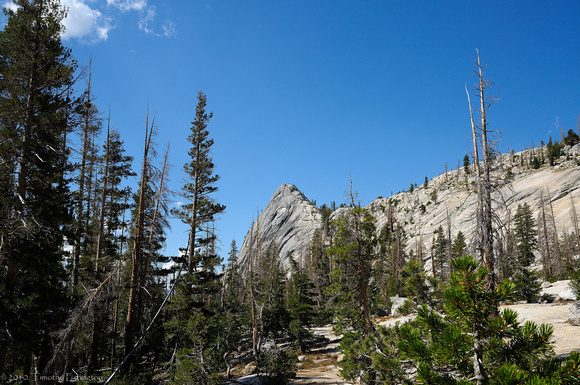Trail to Merced Lake